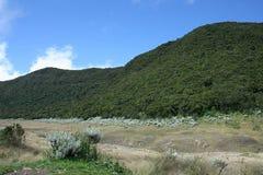 Mount gede pangrango Royalty Free Stock Photo