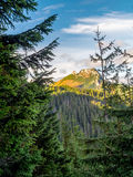 Mount Giewont in the Tatra mountains Stock Images
