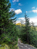 Mount Giewont in the Tatra mountains Royalty Free Stock Photos