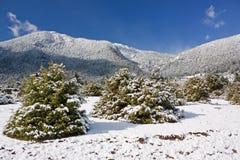 Mount Giona Winter Stock Photos