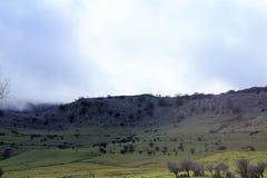 Mount Gorbea royalty free stock image
