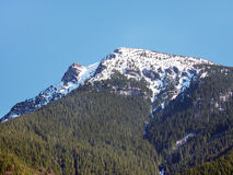 Mount Great Choc in early spring Royalty Free Stock Image