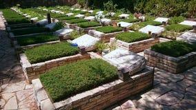 Mount Herzl Military Cemetery - Jerusalem Royalty Free Stock Image