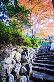 Mount Hiei Royalty Free Stock Image