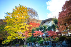 Mount Hiei Royalty Free Stock Photo