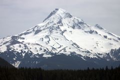 Mount Hood. stock photos