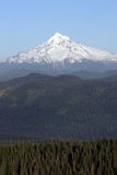 Mount Hood. royalty free stock images