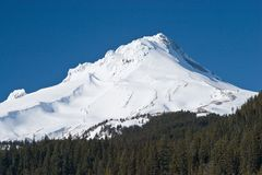 Mount Hood Stock Photography