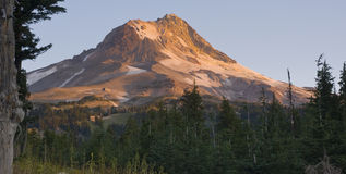 Mt Hood Timberline Volcanic Cascade Range Rock. Mount Hood Timberline Oregon United States Stock Images