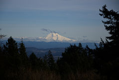 Mount Hood from Council Crest B. Mount Hood seen from Council Crest in Portland stock photography