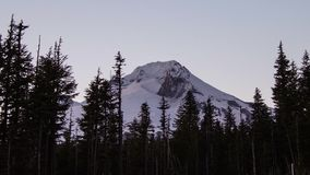 Mount Hood Evening stock footage