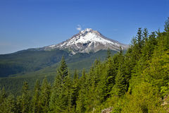 Mount Hood Hiking Trail royalty free stock photography