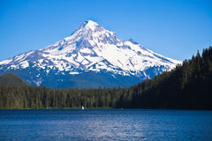 Mount Hood and Lost Lake. Scenic view of snow capped Mount Hood with Lost Lake in foreground, Oregon, U.S.A royalty free stock photography