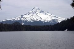 Mount Hood from Lost Lake Royalty Free Stock Images