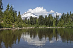 Mount Hood at Mirror Lake Stock Photography