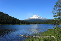 Mount Hood obove Trillium Lake Royalty Free Stock Photo