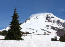 Mount Hood, Oregon Royalty Free Stock Photography