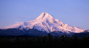 Mount hood, oregon. A view of Mount Hood from Parkdale, Oregon, in the Hood River Valley region of the northern Oregon Cascade Mountains stock images