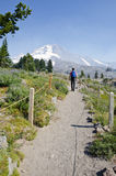 Mount Hood Oregon Stock Image