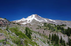 Mount Hood in Oregon Royalty Free Stock Photo