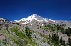 Mount Hood in Oregon. Mount Hood near Portland in Oregon royalty free stock photo