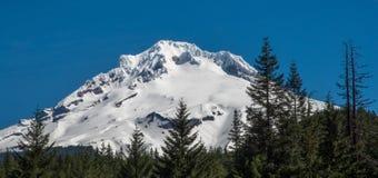 Mount Hood, Oregon& x27;s tallest mountain. A snow-capped Mount Hood in the Oregon Cascade range Stock Image