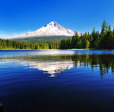 The Mount Hood reflection in Trillium Lake Royalty Free Stock Photography