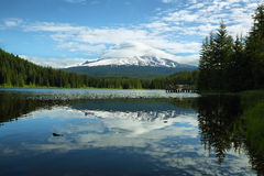 The Mount Hood reflection in Trillium Lake Royalty Free Stock Images