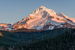 Mount Hood with snow cover Royalty Free Stock Image