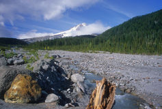 Mount Hood stream Stock Photo