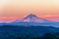 Mount Hood Sunset Closeup. Mount Hood looking purple as the sun sets in the Pacific Northwest royalty free stock image