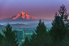 Mount Hood at Sunset Royalty Free Stock Photos