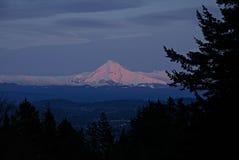 Mount Hood at Sunset royalty free stock image