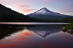 Mount Hood at Trillium Lake 4 Stock Photography