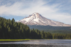 Mount Hood at Trillium Lake Royalty Free Stock Images