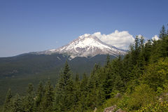 Mount Hood View Along Hiking Trail Royalty Free Stock Photo