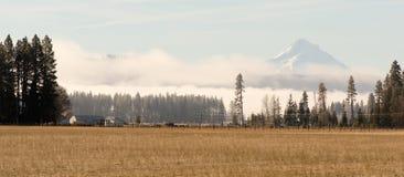 Mount Hood Washington Side Ranch Land Farm Grasslands Royalty Free Stock Image