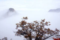 Mount Hua Royalty Free Stock Photo