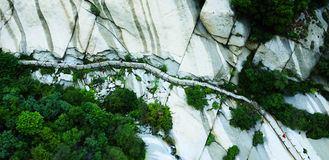 Mount Hua rocks. Rock formations and plants growing on the sides at Hua Shan, China Royalty Free Stock Photos