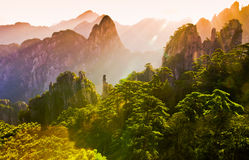 Mount huangshan. The mount huangshan sunrise in anhui province in china Royalty Free Stock Images