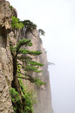 Mount Huangshan Stock Photos