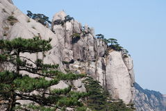 Mount Huangshan scenery. China Mount Huangshan strange shaped pines, stones Royalty Free Stock Photography