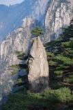 Mount Huangshan scenery. A pine tree long stone, like China brush Royalty Free Stock Photos