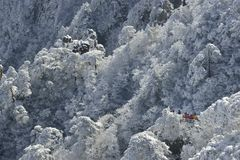 Mount Huangshan snow Stock Photography