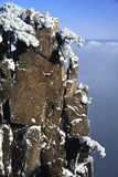 Mount Huangshan snow Stock Images