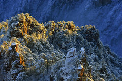 Mount Huangshan sunrise in winter. Anhui,China Stock Image