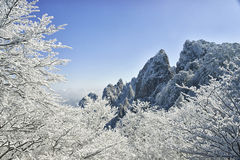 Mount Huangshan in winter Royalty Free Stock Photo