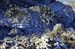 Mount Huangshan in winter Stock Image