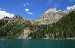 Mount Huber at Lake O'Hara Royalty Free Stock Images