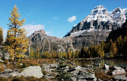 Mount Huber and Opabin Plateau, Yoho National Park, Canada Royalty Free Stock Image